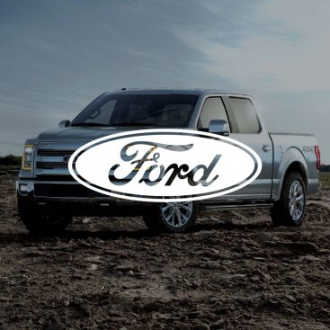 Ford Case Study