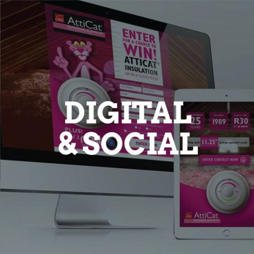 cat_digital_social